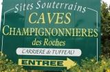 2017-caves-bourrc3a90001